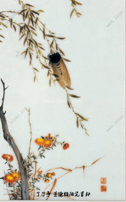 24种鸟类设色步骤
